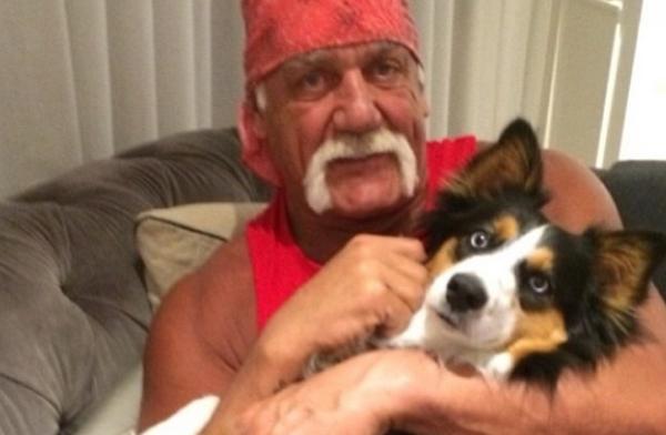 Hulk Hogan Birthday