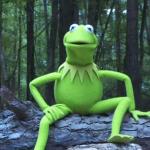 Kermit the Frog Ice Bucket Challenge for ALS Video