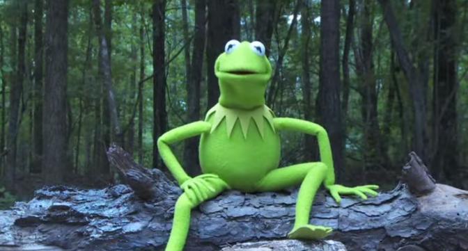 Kermit the Frog Ice Bucket Challenge Video