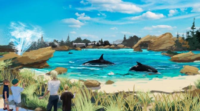 New Habitat for SeaWorld Killer Whales