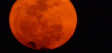 Super Moon 2014 Over South Florida – Miami