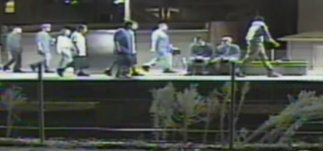 Brutal Machete Attack Video – 7 People Charged