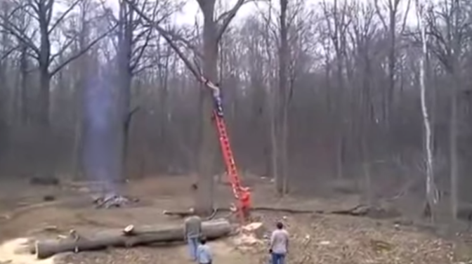 Man Cutting Down Tree Branch Gets Thrown to the Ground