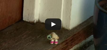 MARCEL THE SHELL WITH SHOES ON, THREE – VIDEO