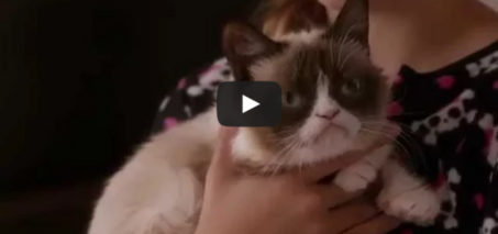 Grumpy Cat's Worst Christmas Ever – Lifetime