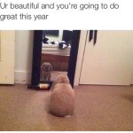 Ur beautiful and you're going to do great this year bunny