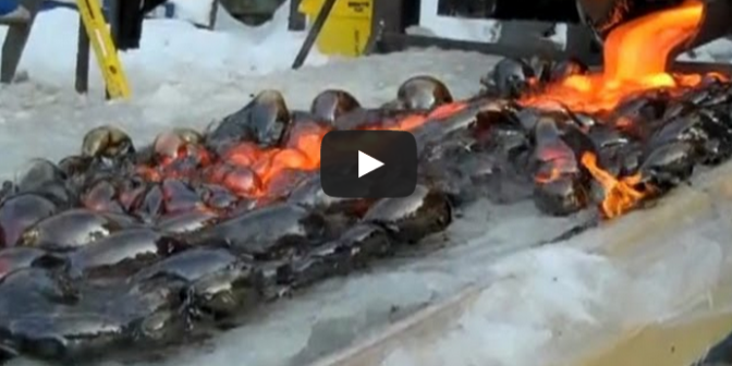 What Happens When Lava Meets Ice?
