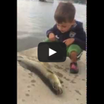 Fish Flop! Kid gets hit in the face with a fish