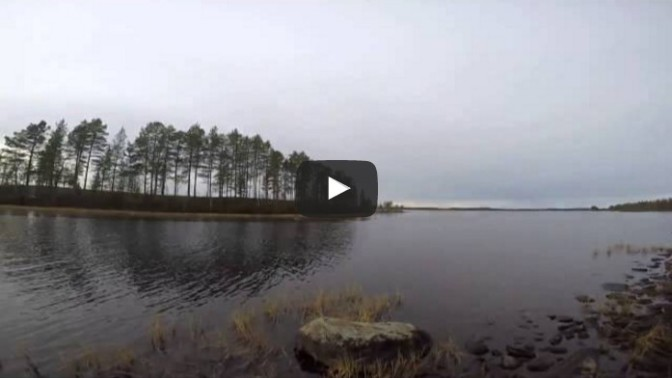 Hunter Jumps Into Icy Cold Waters To Save His Dog! Sam Carry
