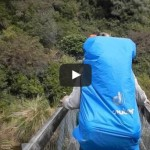 Suspension bridge collapses on hikers in New Zealand