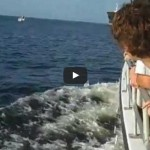 Tanker Near Miss Pleasure Boat