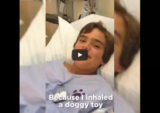 He swallowed his dog's toy