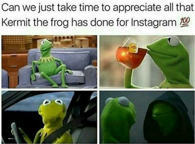 can we just take time to appreciate all that kermit the frog has done for instagram