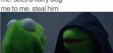 40 Evil Kermit the Frog Me to Me Memes