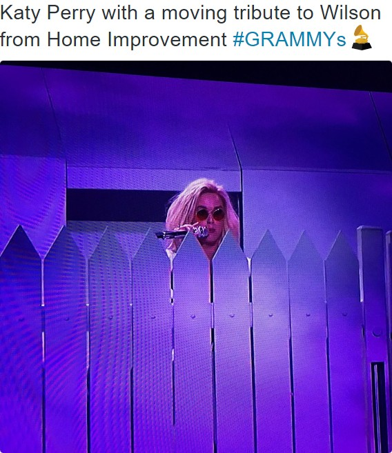 katy perry with a moving tribute to wilson from home improvement grammys